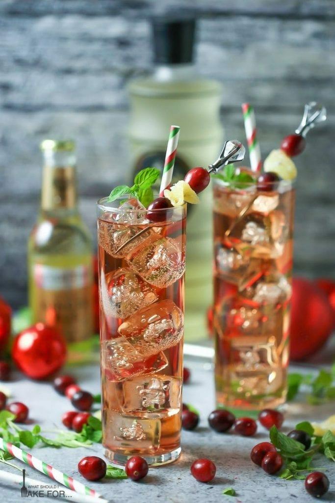 Cranberry Ginger Fizz Cocktail