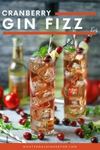 Drink and be merry with this easy and festive cranberry ginger fizz cocktail. Tart, sweet, spicy and a whole lot of fun!