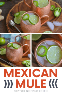 The traditional Moscow mule gets a Mexican twist with tequila and sliced jalapeño. And homemade ginger beer really turns up the wow factor (plus it's easier than you think)!